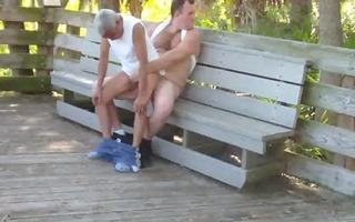 bear copulates in public