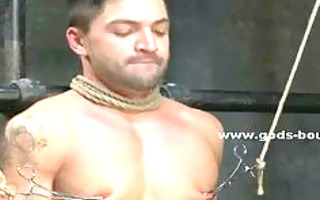 gay hunk with sexy body fastened in ropes sucked