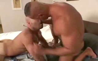 dad bears fuck their lad